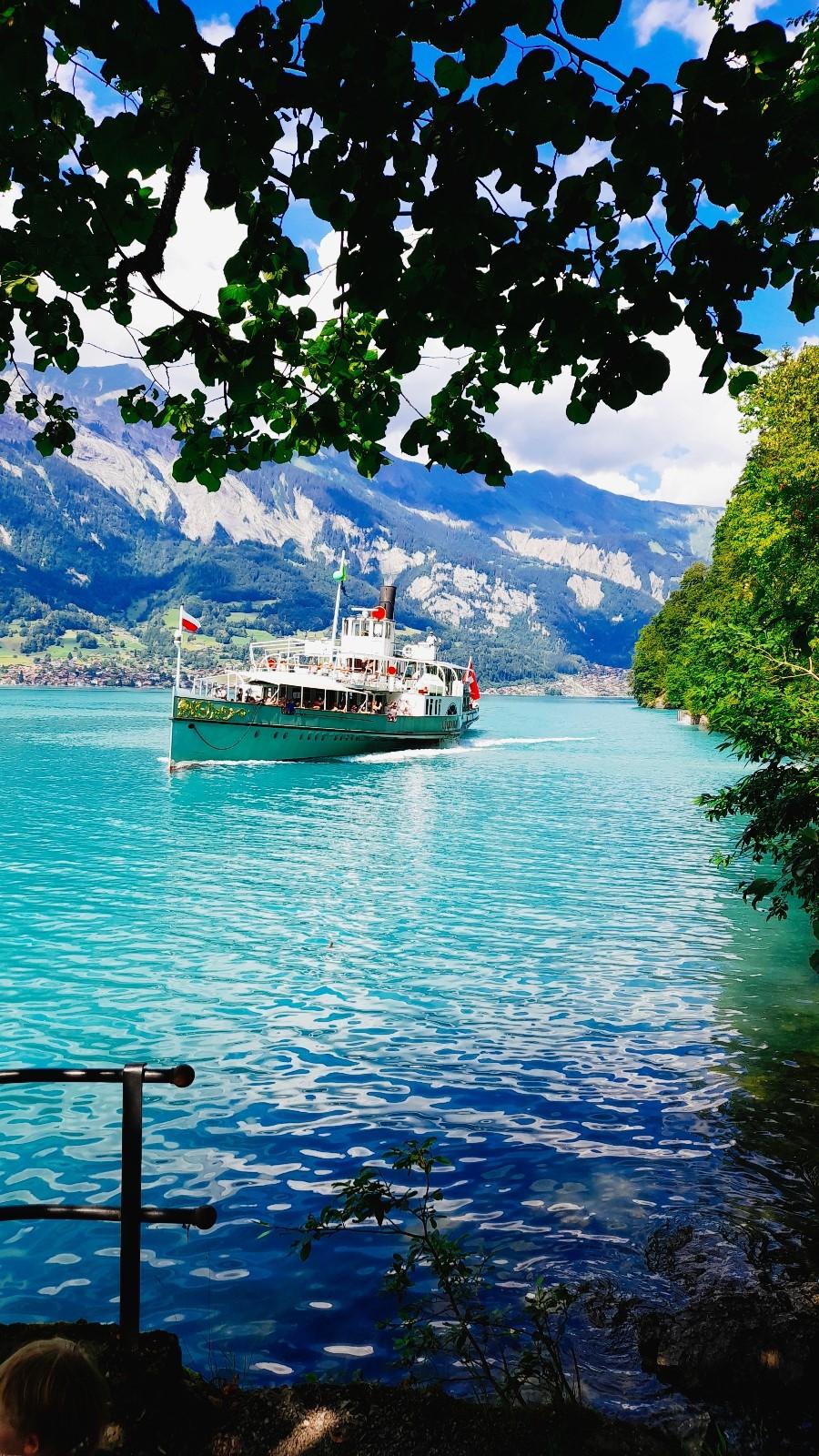 Heiratsantrag in der Schweiz Brienzersee